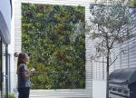 dekoratyvinė sienelė, dirbtinė žolė, dirbtiniai augalai, namų dizainas