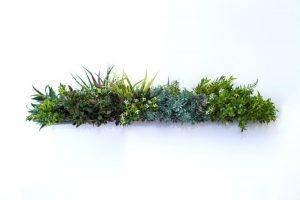 dekoratyvinė sienelė, dirbtinė žolė