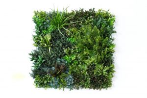 dekoratyvinė sienelė, dirbtinė žolė, svajonių vejos