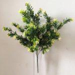 dekoratyviniai krūmai, dekoratyviniai augalai