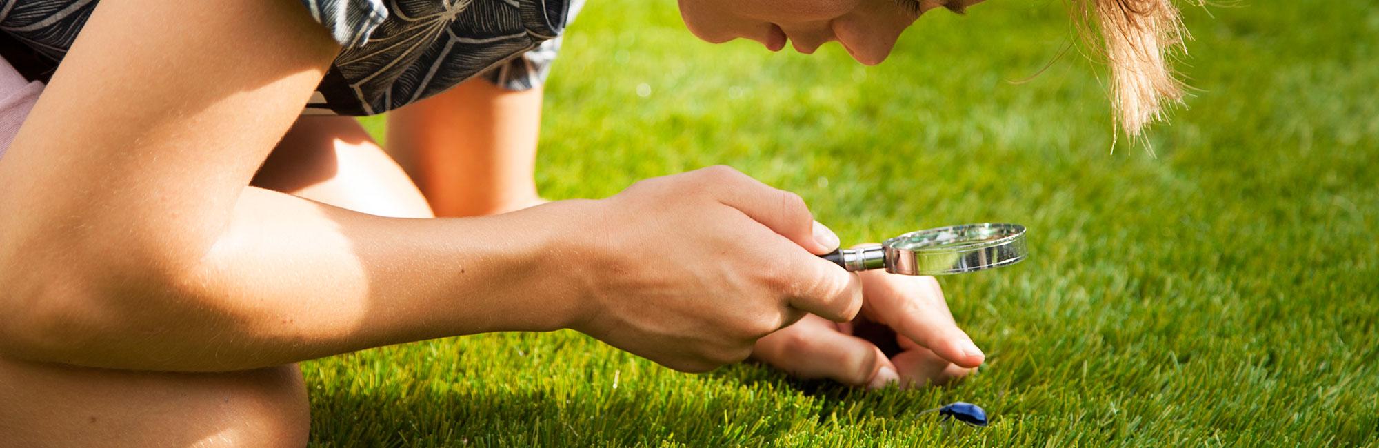žolės pjovimas, dirbtinė žolė, namo aplinka